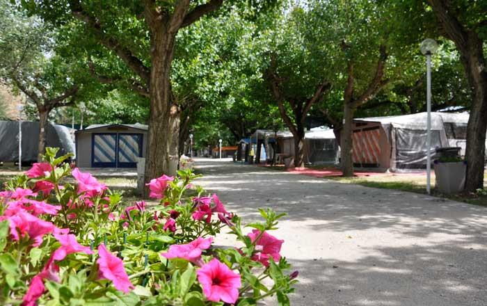 Camping a Senigallia - Viale Camping Senigallia Spiaggia di Velluto